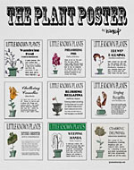 Little Known Plants